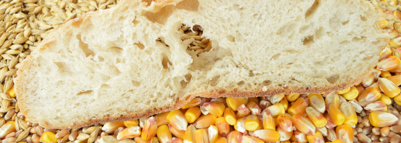 10 Major Protein Sources for Vegans - Whole grains and cereals
