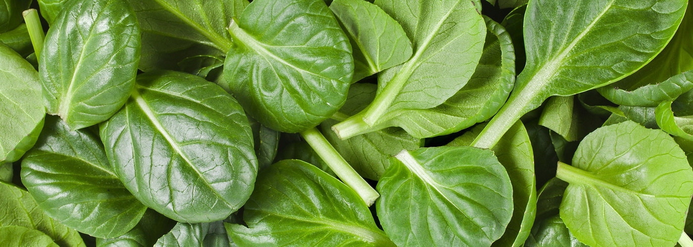 10 Major Protein Sources for Vegans - Spinach