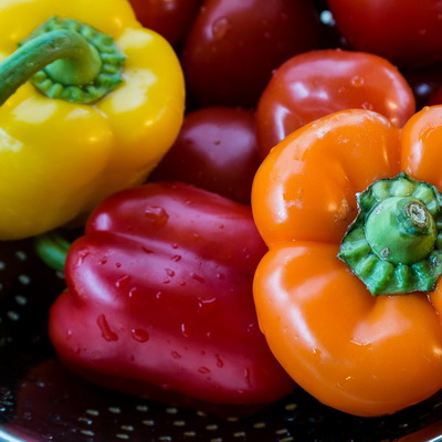 15 Tips to prevent Salmonellosis