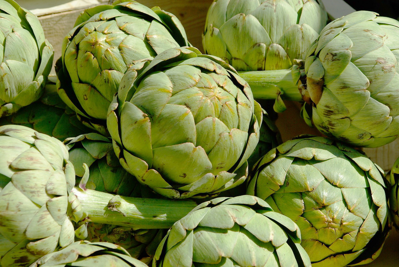 Legend of Artichoke
