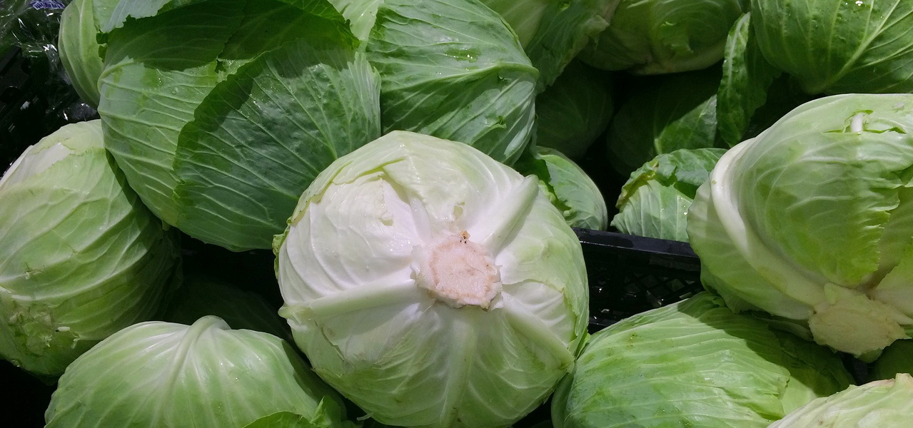 10 Vegan Sources of Bioavailable Calcium - Green Cabbage