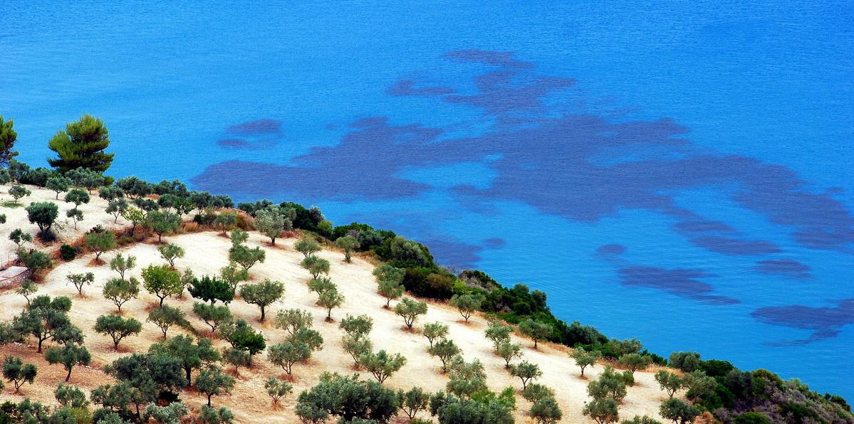 Beauty secrets of olive oil - Mediterranean