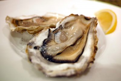 History of Oysters
