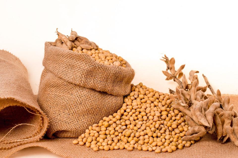 Food Myth: Soy effective on menopause symptoms