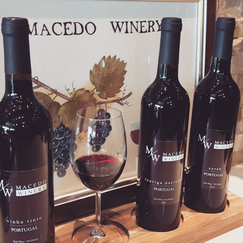 Macedo_winery2