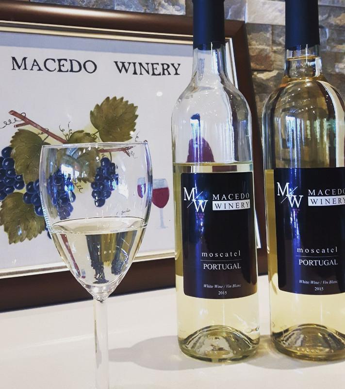 Macedo_winery3