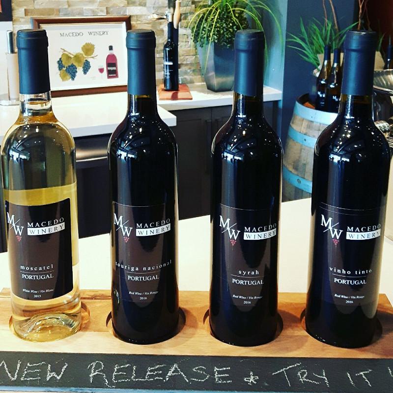 Macedo_winery4