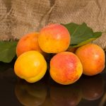 Dried Apricots: Truth and Myths