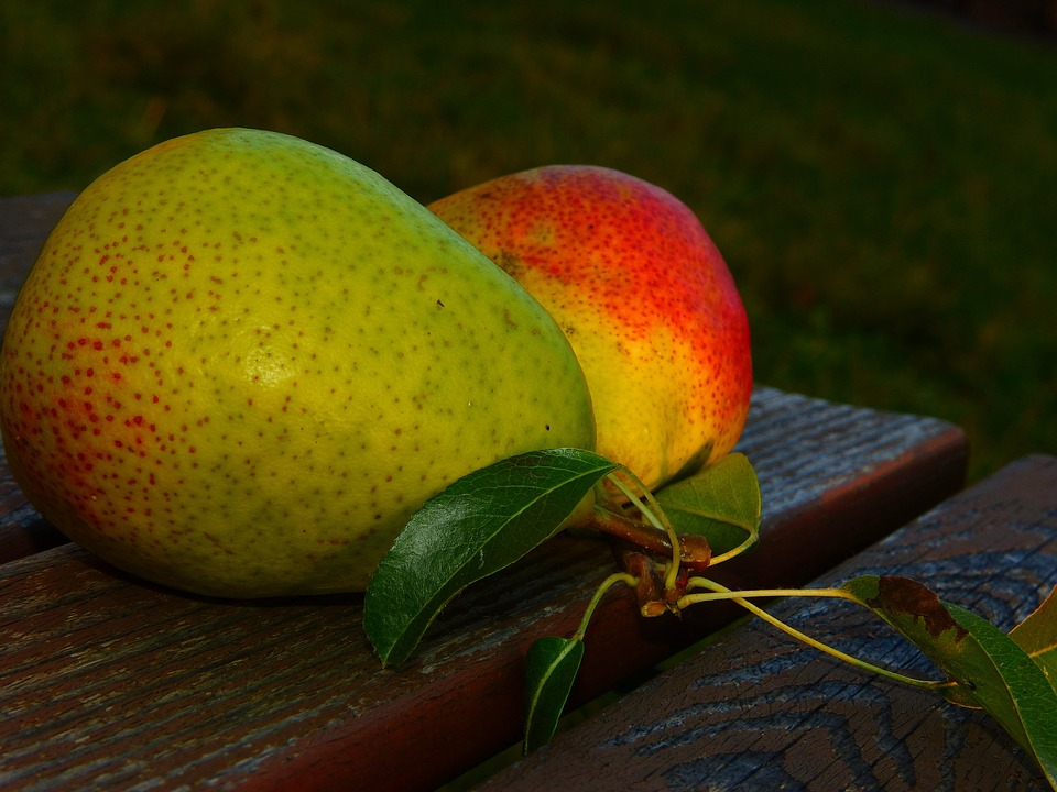 Some good reasons to eat pears