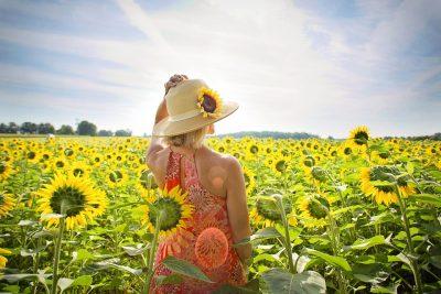 3 Major Health Benefits of Sunflower Seeds