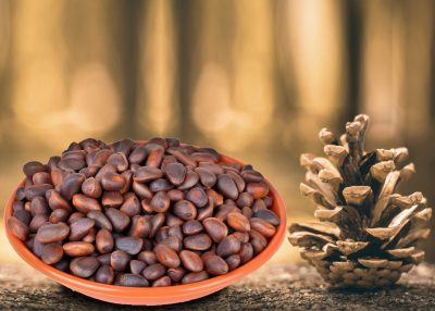 Hidden Health Benefits of Underappreciated Pine Seeds
